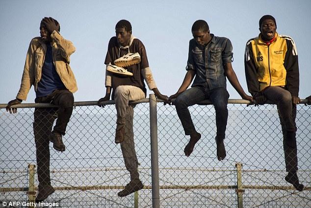 Fence Sitting Generation