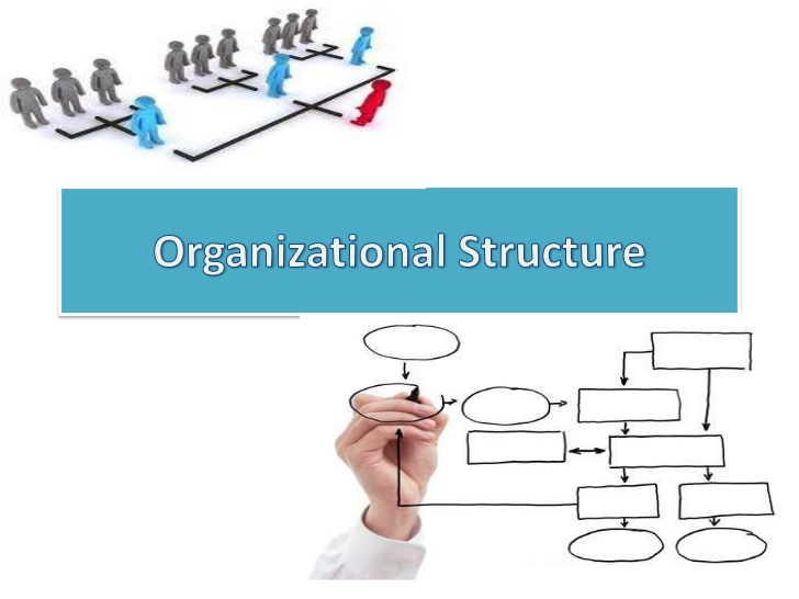 COURAGEOUS Organizational STRUCTURE