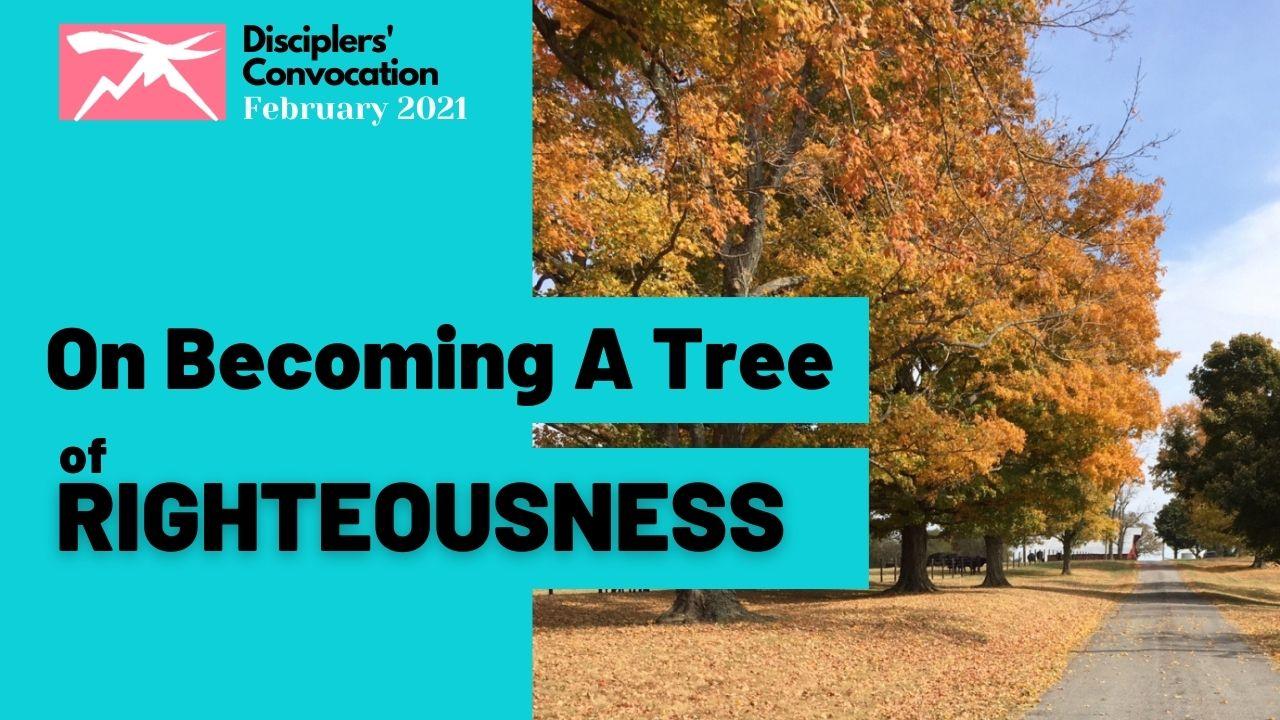 On Becoming A Tree of Righteousness