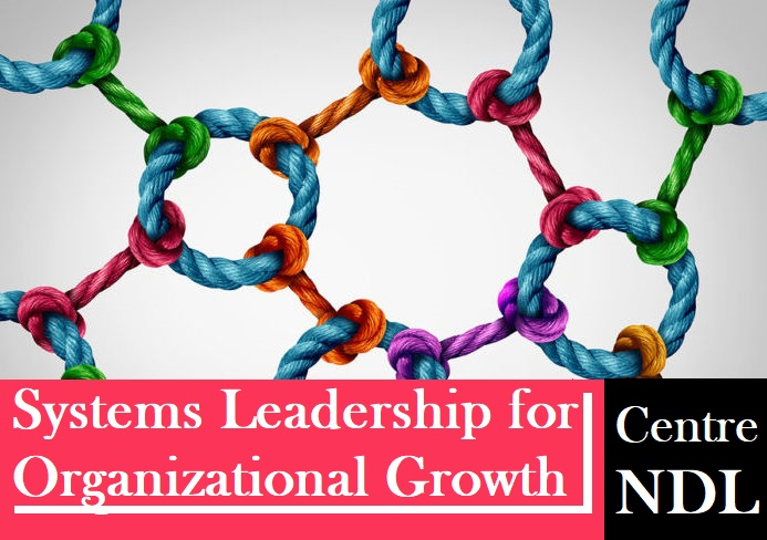 Systems LEADERSHIP for Sustainable Organizational GROWTH