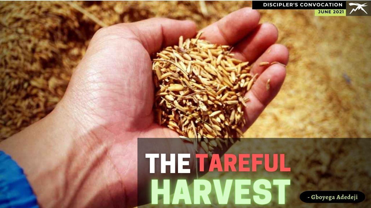 The TAREFUL Harvest